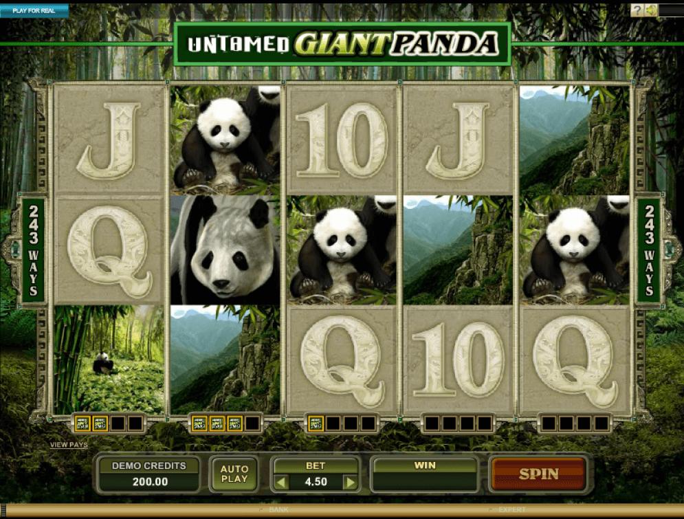 243 Winning Ways from Giant Panda
